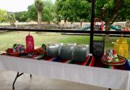 fiesta_reception_4229